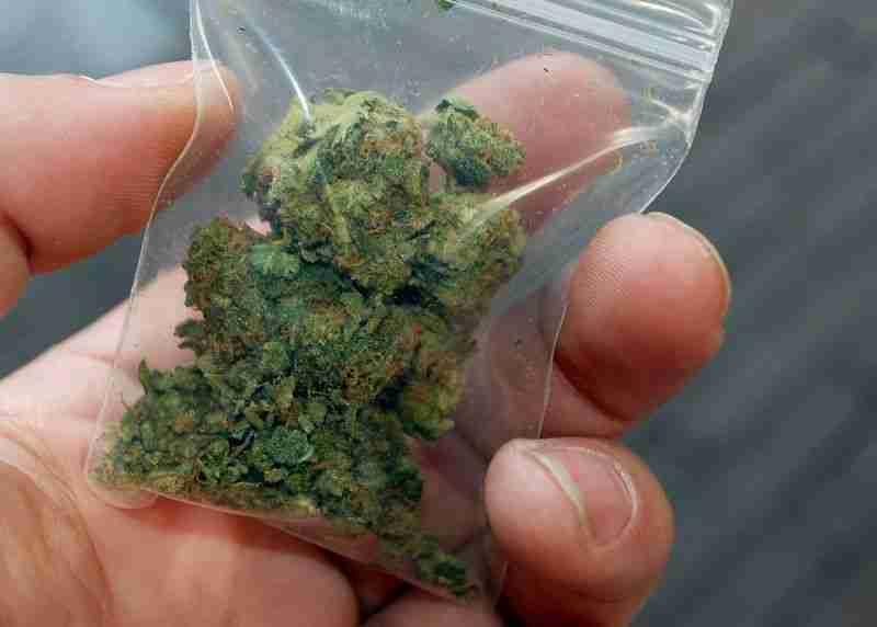 korisnici stranica marihuane za upoznavanje