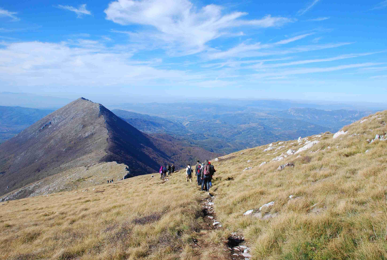 vodič planinarskih staza crne gore i bih