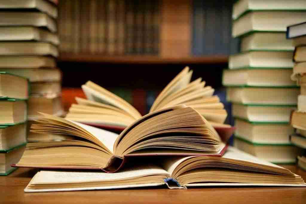 vkbi inicira uspostavu javnih ustanova za bosanski jezik i bošnjačku književnost