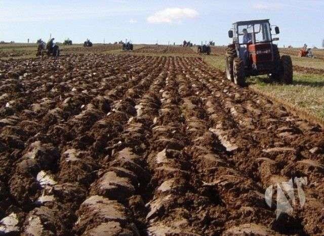 hoće li poljoprivrednici dobiti poticaje? (video)