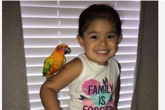 Djevojčica istrenirala svoju pticu da napada sve one koji joj se ne dopadaju