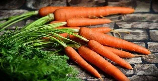 hrana koja prirodnim putem poboljšava vid