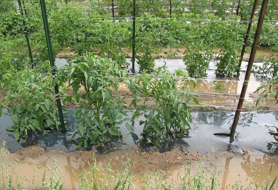 Općina Travnik: Važna obavijest za građane poplavljenog područja općine