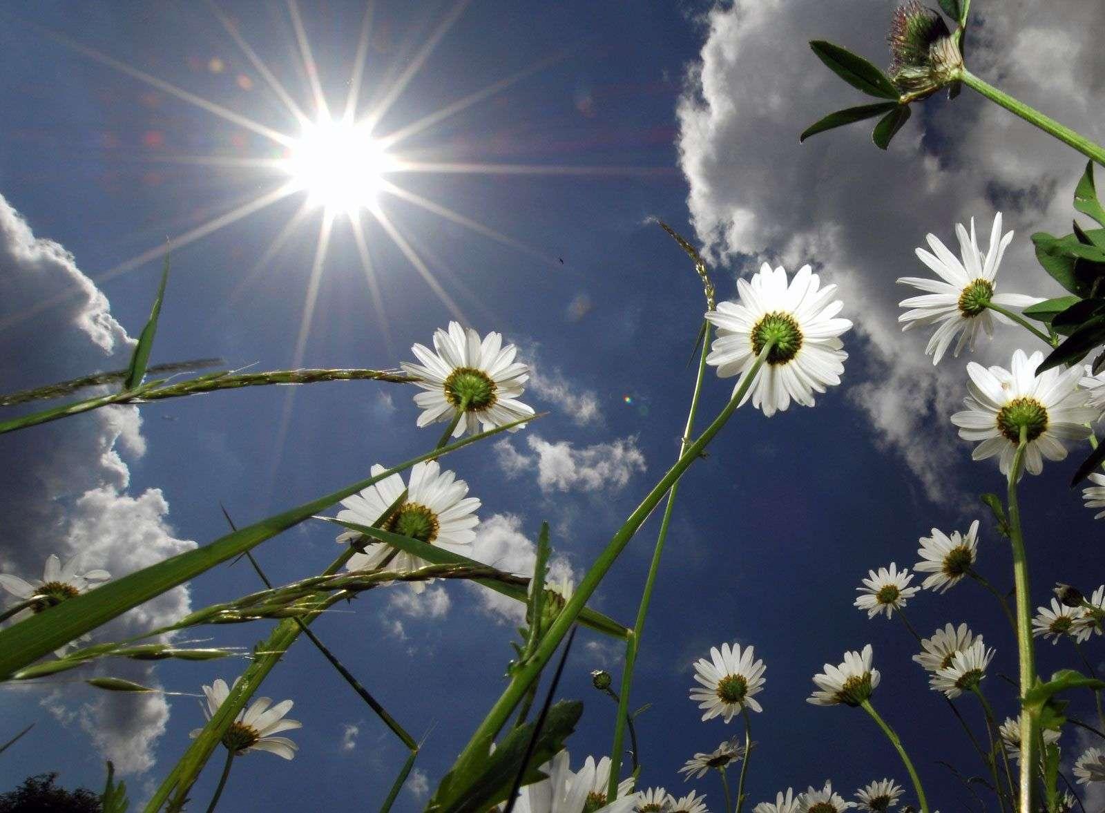 U BiH danas pretežno sunčano vrijeme
