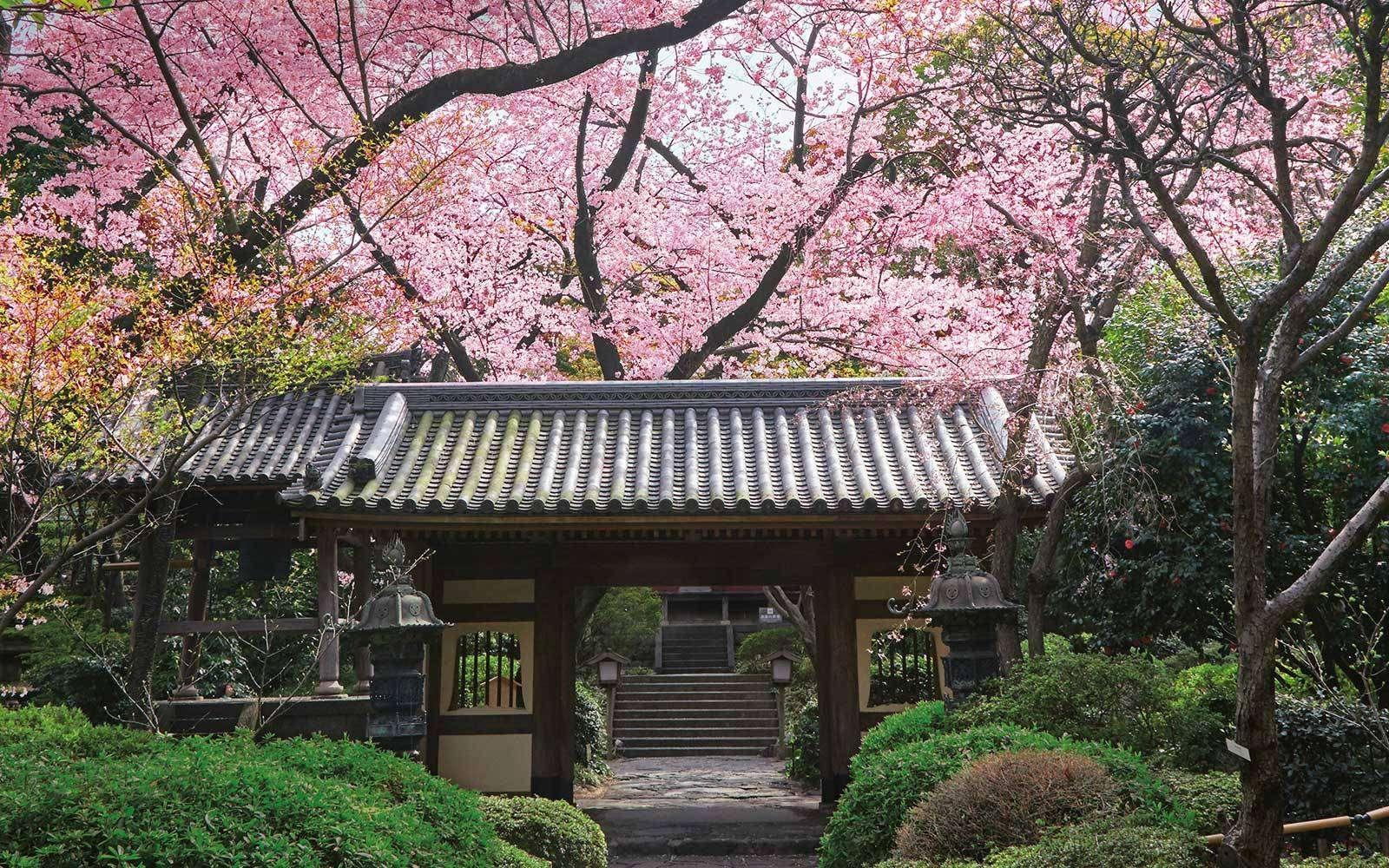 U Japanu se napuštene kuće poklanjaju