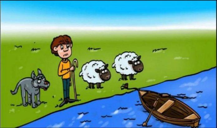 MOZGALICA: Test sa čobaninom i ovcama razbjesnio je mnoge, hoćete li vi pogriješiti?