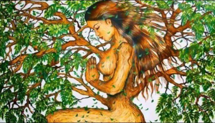 Test ličnosti / Jeste li samotnjak: Šta ste prvo ugledali na slici – ženu ili stablo