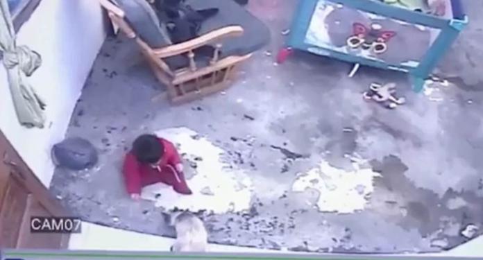 Dijete umalo palo niz stepenice, roditelji u šoku kad su vidjeli tko ga je spasio