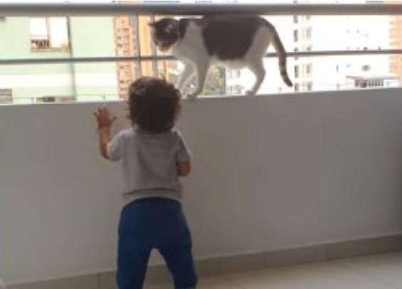 mačka oduševila potezom, možda spasila dijete od tragedije