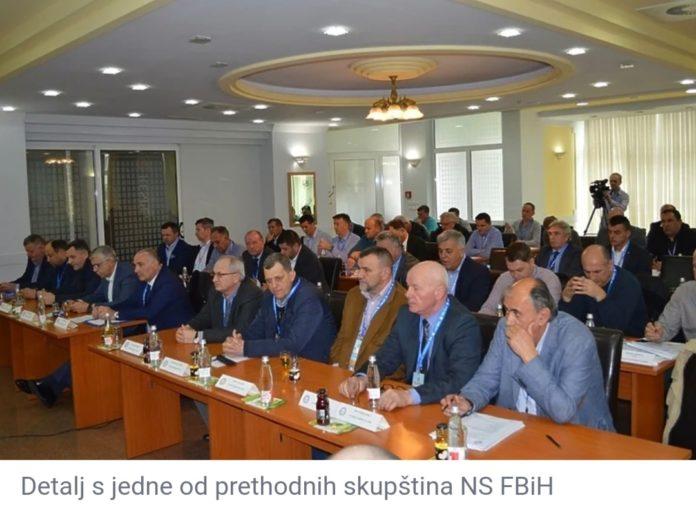 U četvrtak Izborna skupština NSFBIH