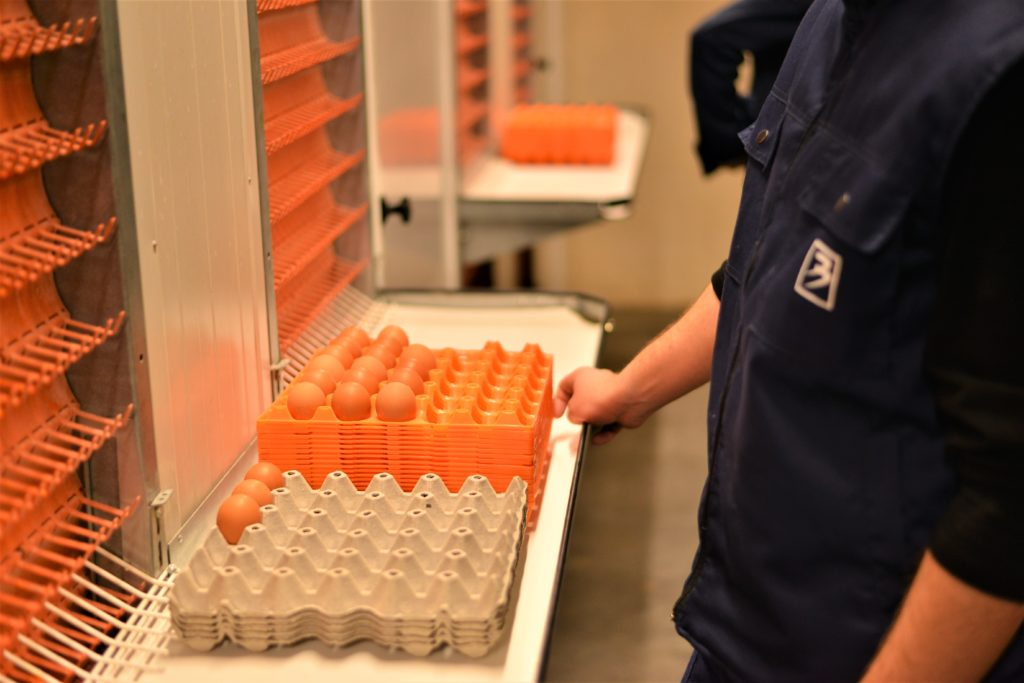 Kompanija Bingo pustila u rad najsavremeniji repro centar i inkubatorsku stanicu za uzgoj jednodnevnih pilića u regiji