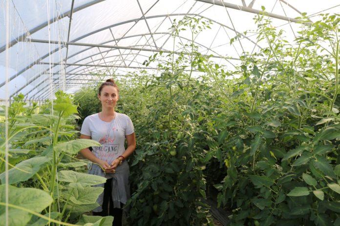 Preduzetništvo i radna mjesta: Evropska unija izdvojila 8 miliona eura za razvoj lokalnih partnerstava u BiH